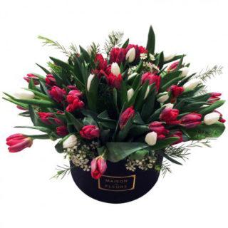 белые тюльпаны, фуксиевые тюльпаны, цветы в коробке, Maison des fleurs
