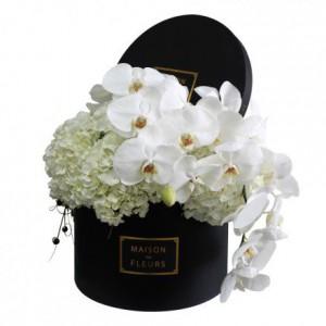Белые Гортензии с белыми Орхидеями в коробке
