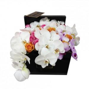 Букет из роз с белыми орхидеями в коробке