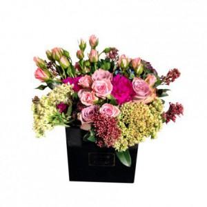 Розовые розы с фуксиевыми гвоздиками Шабо и Седумами в коробке