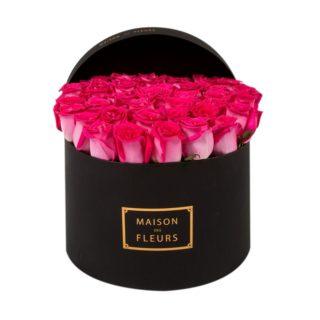 Фуксиевые розы